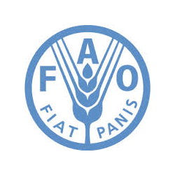 Food and Agriculture Organisation of the United Nations (FAO)