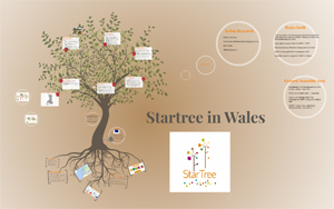 StarTree in Wales 300